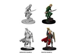 Female Elf Fighter Nolzur's Marvelous Miniatures