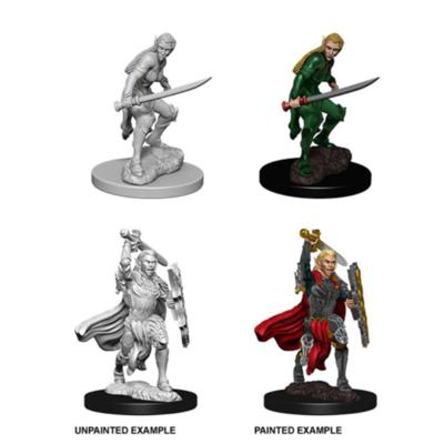 Female Elf Fighter Nolzur's Marvelous Miniatures