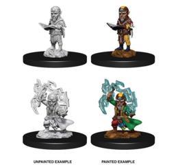 Male Gnome Sorcerer Pathfinder Miniature