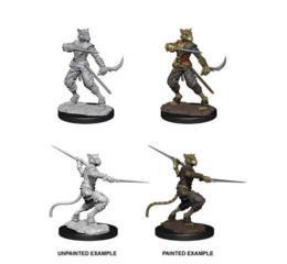 Male Tabaxi Rogue Nolzur's Marvelous Miniatures