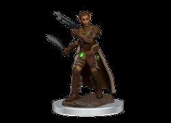 DD5 Icons Premium Mini: Shifter Female Rogue
